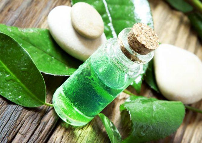 Tea Tree Essence